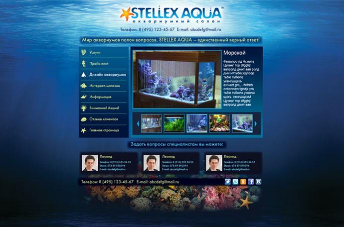 Дизайн первой страницы сайта компании «Стеллекс Аква»