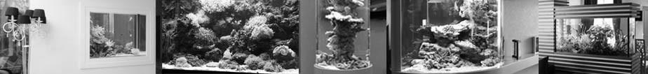 Дизайн и изготовление аквариумов